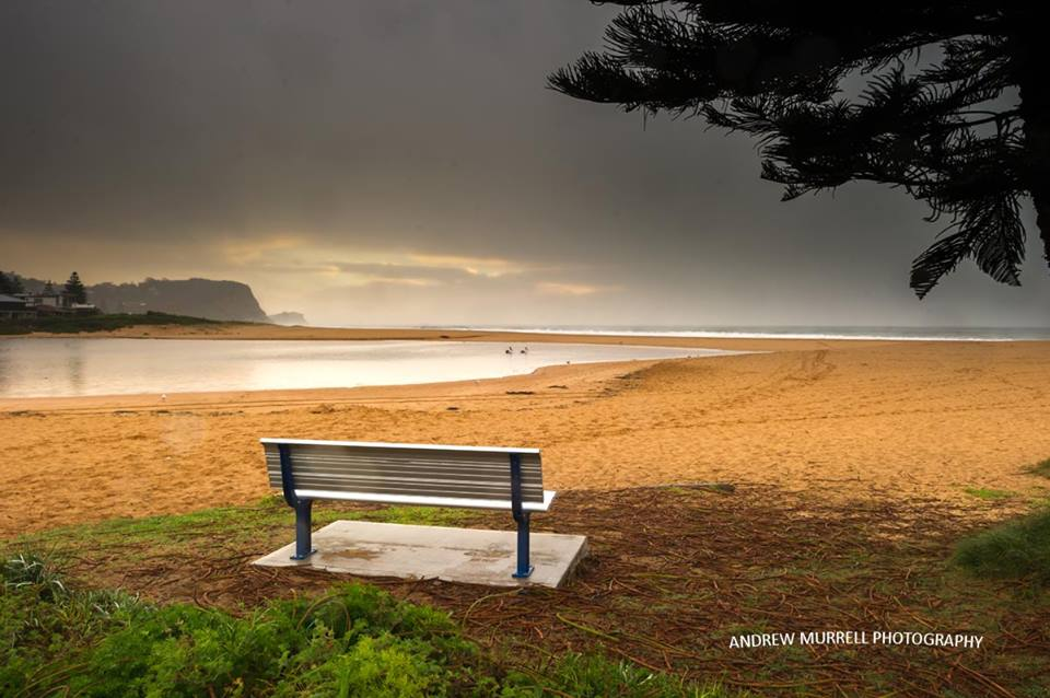 Andrew Murrell Photography