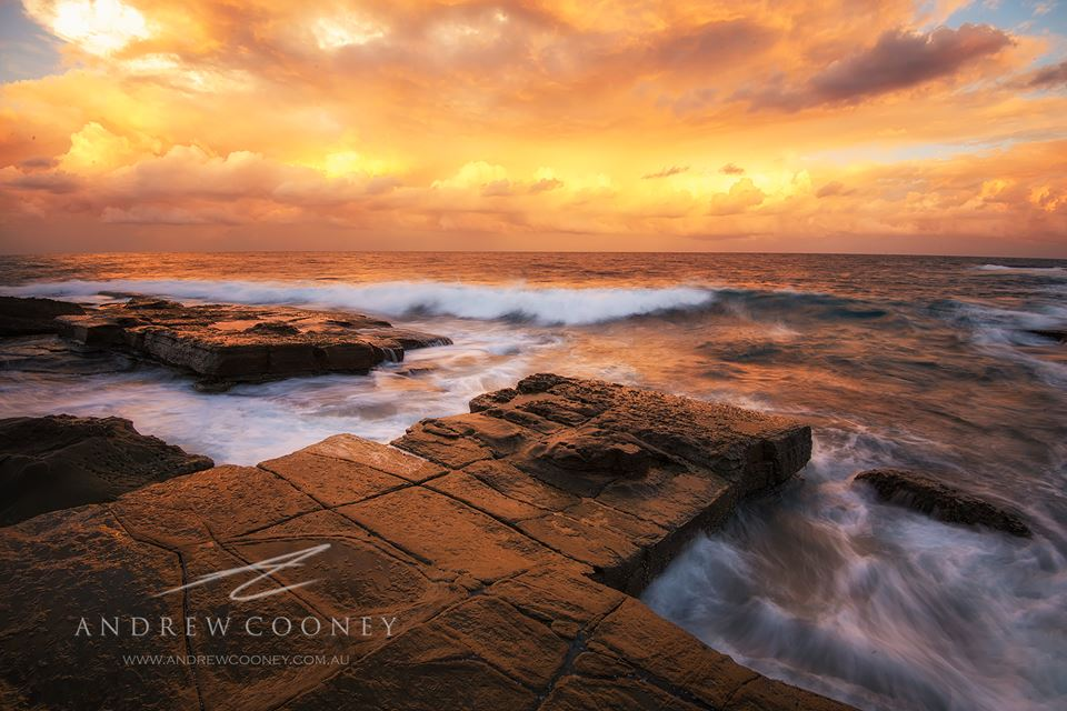 Ask Roz Central Coast Photographer of the week - Andrew Cooney