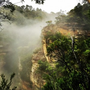 Wentworth Pass, Wentworth Falls, Ask Roz Blue Mountains