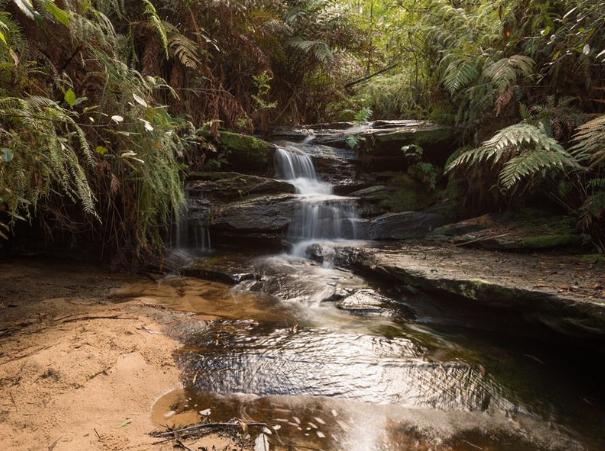 Lawson Waterfalls and walks
