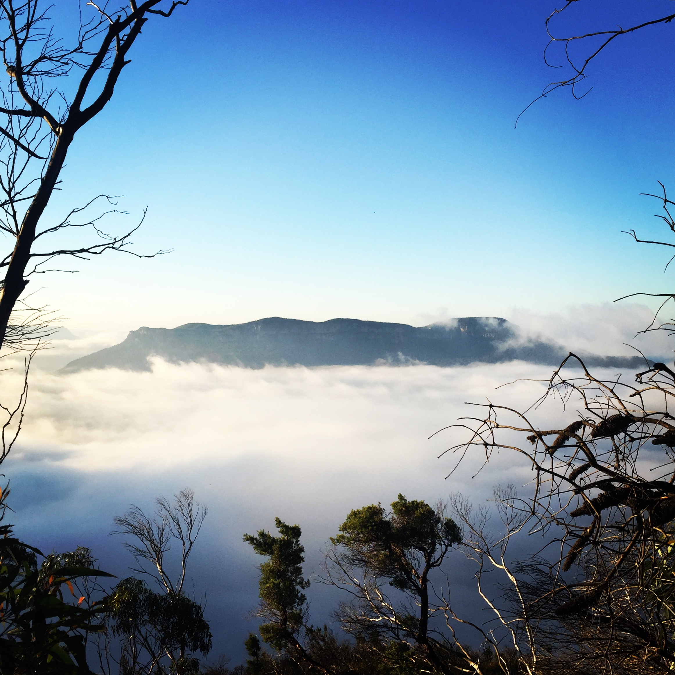 Ask Roz Blue Mountains best sunrise spots in Leura