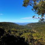 Ask Roz, Paul Harris Lookout