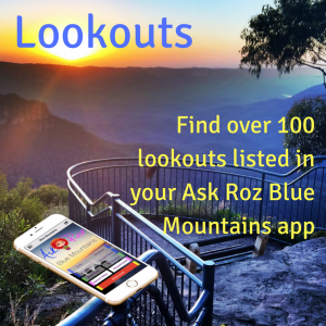 Ask Roz Blue Mountains Lookouts