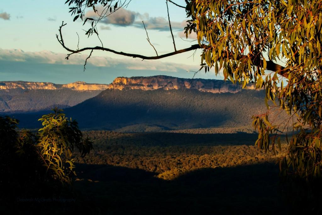 Ask Roz Blue Mountains Photographer of the week - Deborah McGrath