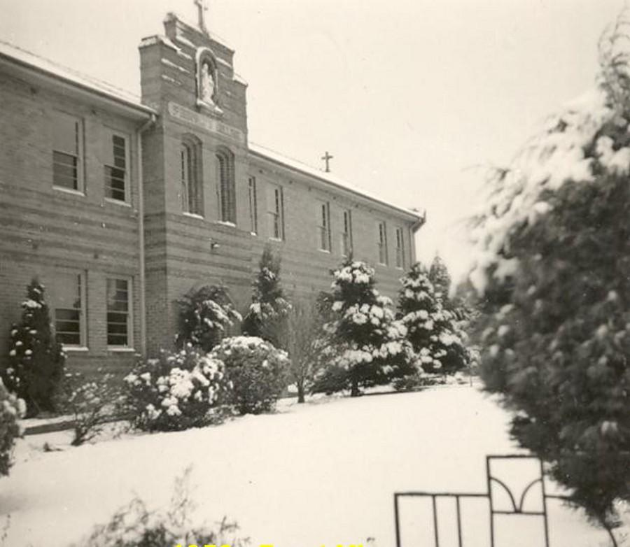 St Bernards in 1954