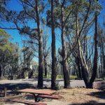 Mount York, Mount Victoria