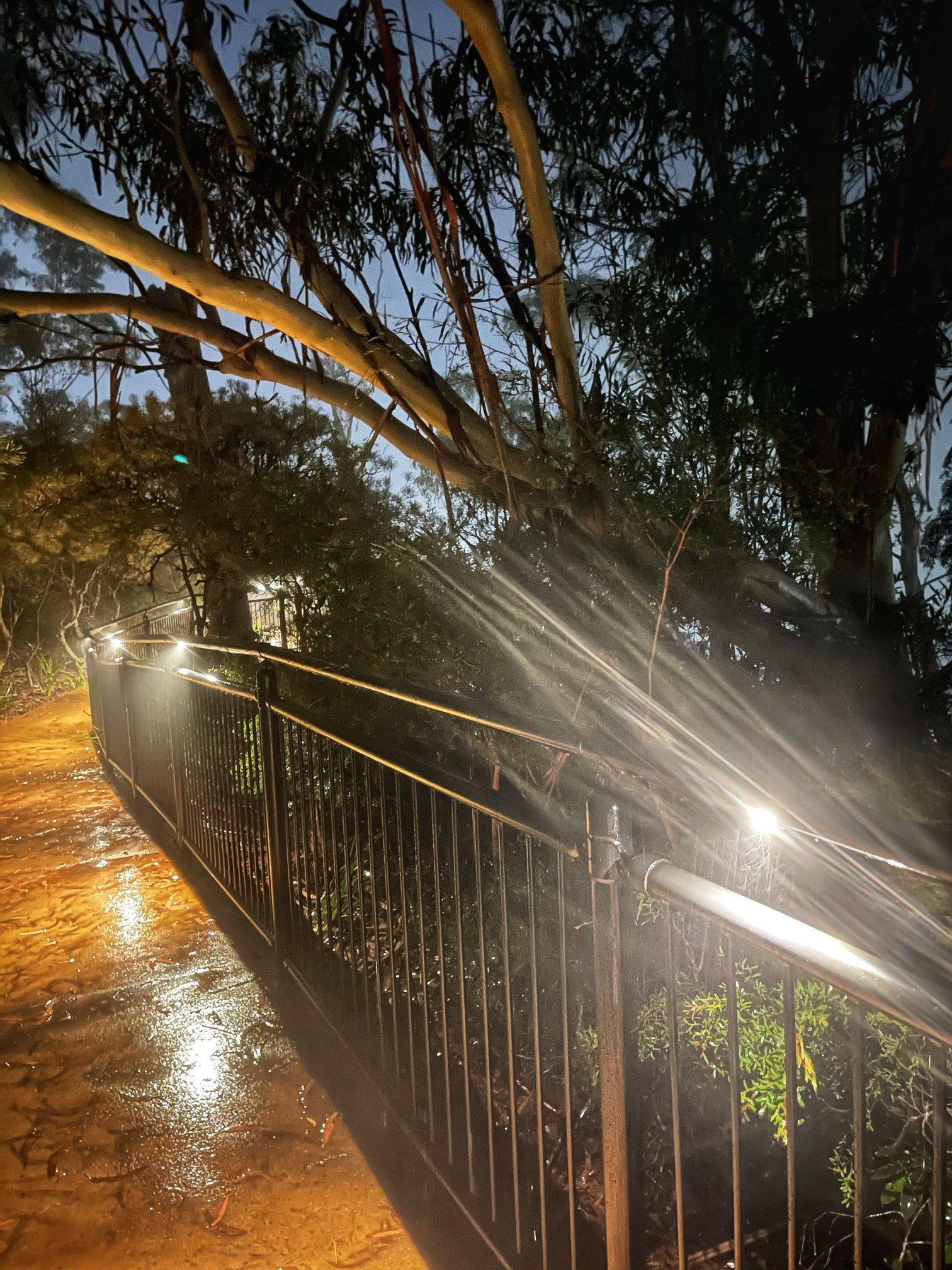 Katoomba Night-Lit Walk