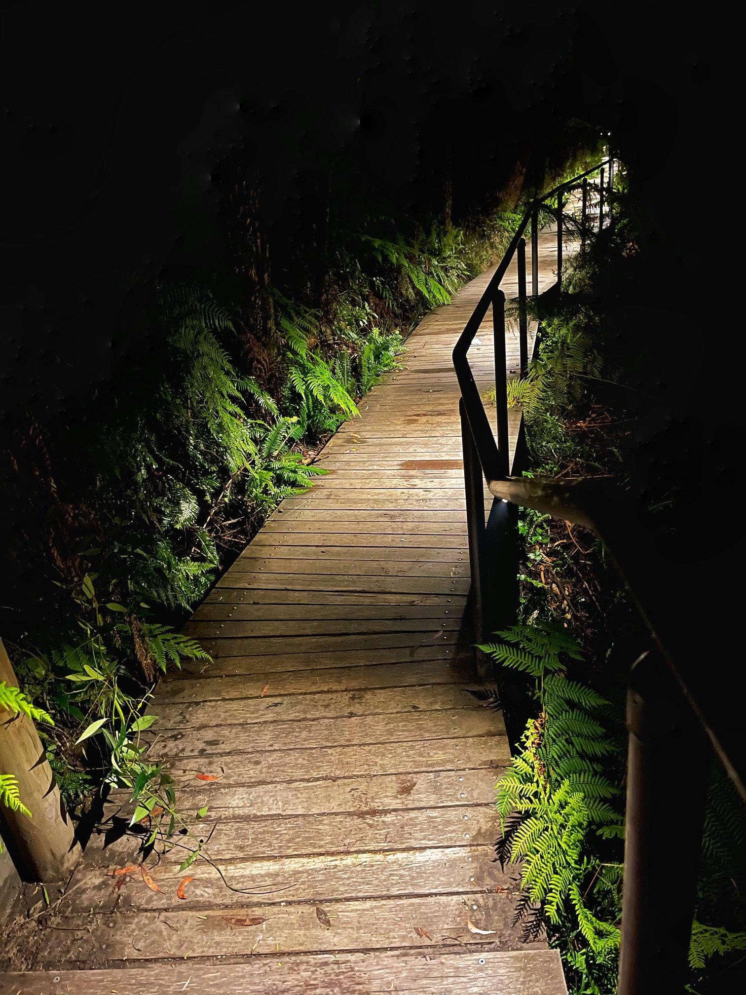 Katoomba night lit walk