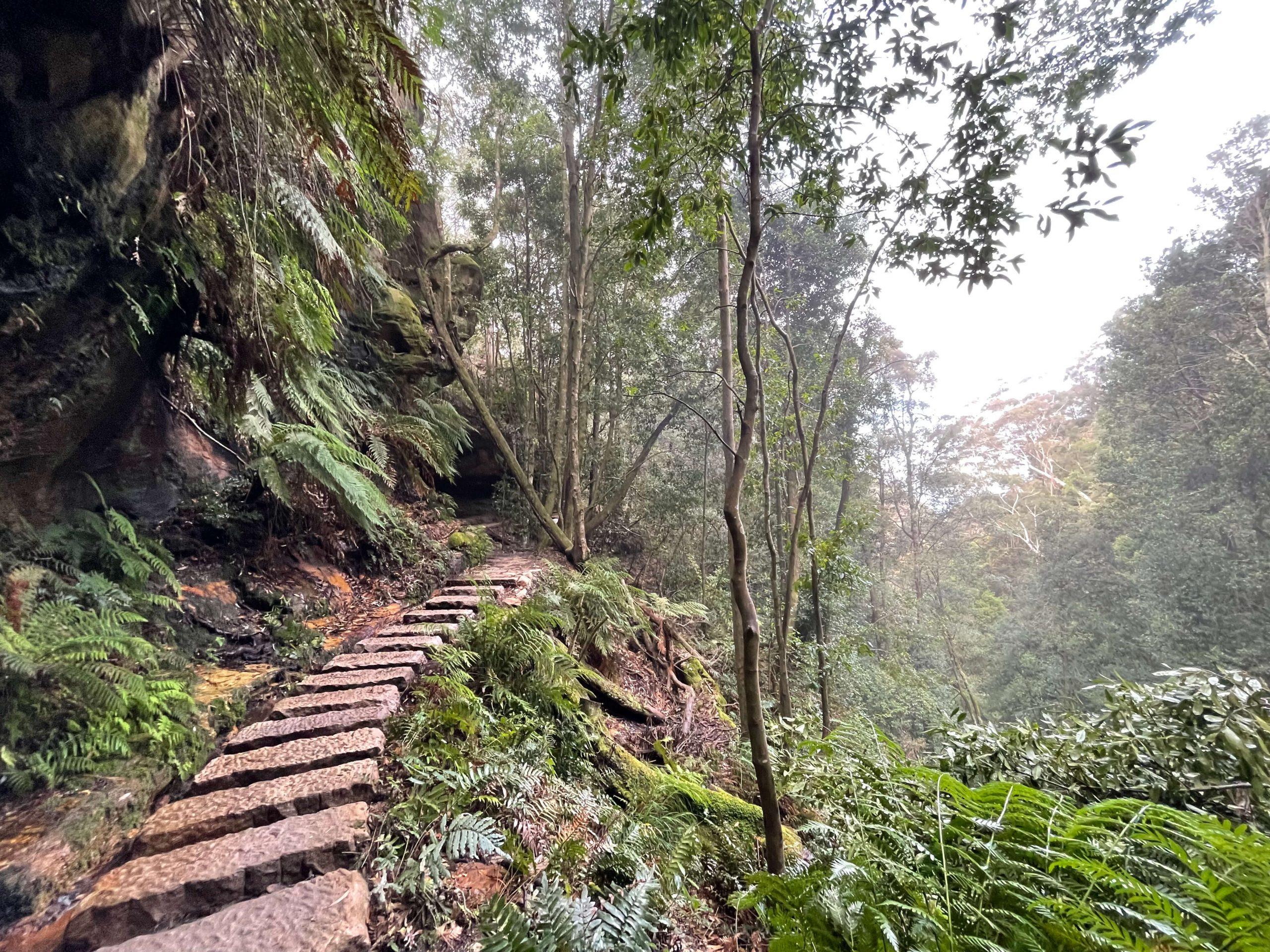 Leura Cascade Loop Walk