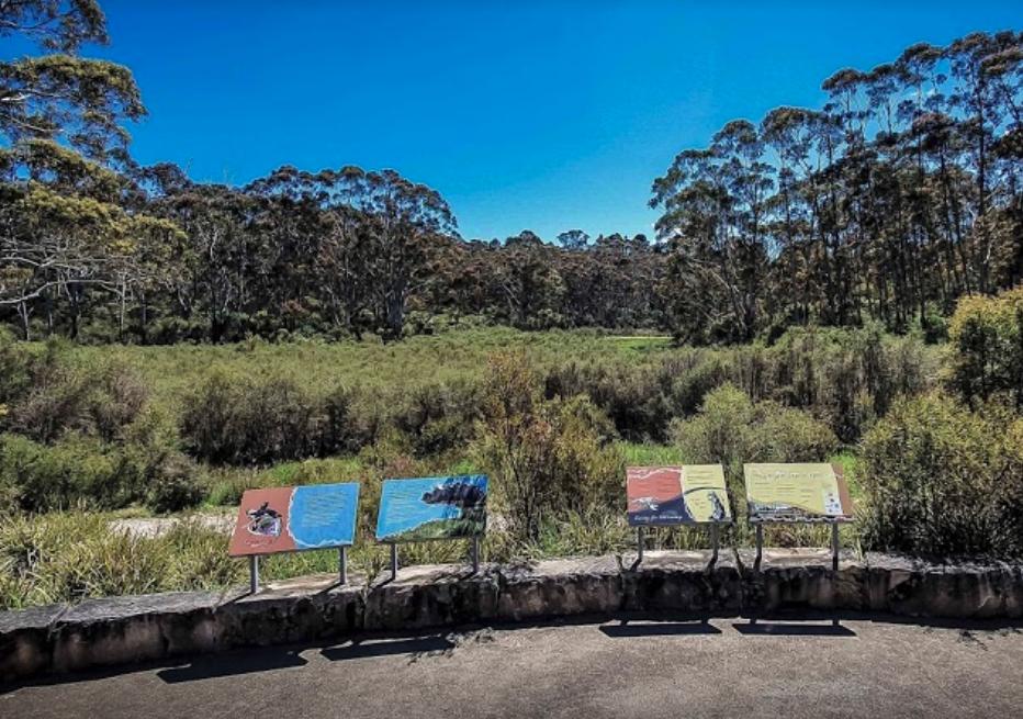The Gully - Katoomba