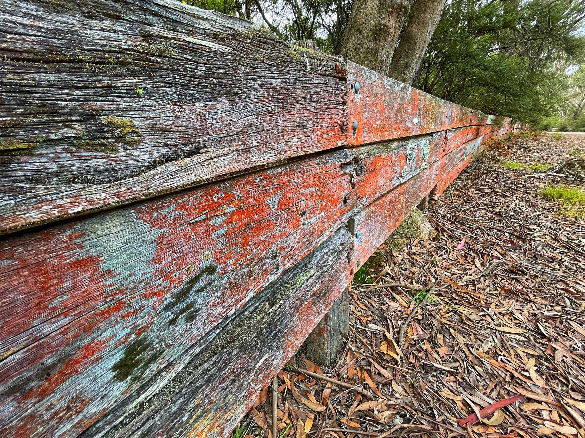 Catalina Park Katoomba