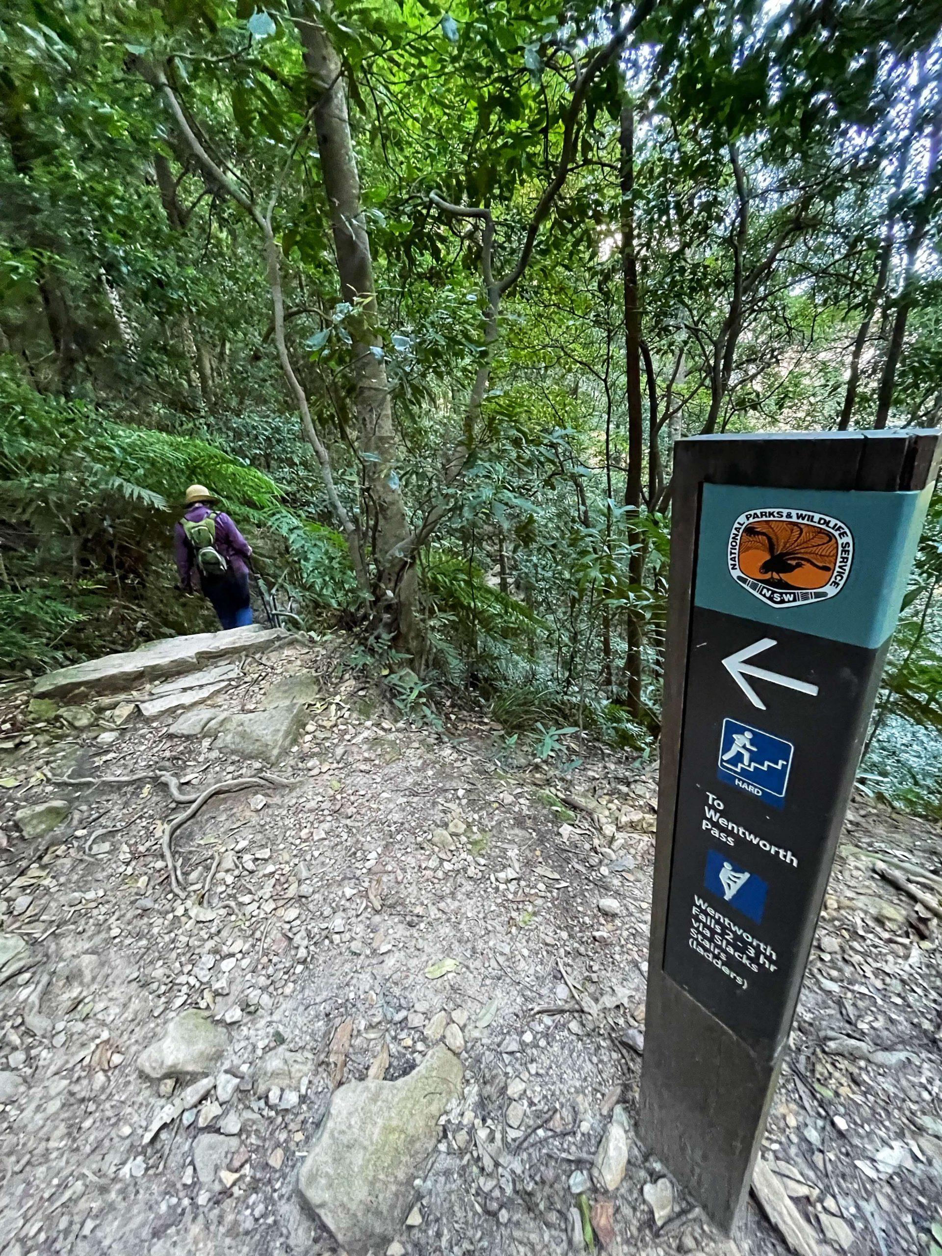 Valley of the Waters loop track via Slack Stairs Wentworth Falls